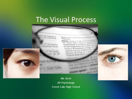 The Visual Process Mr. Koch AP Psychology Forest Lake High School.