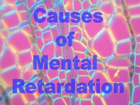An understanding of mental retardation