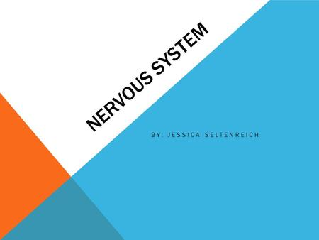 NERVOUS SYSTEM BY: JESSICA SELTENREICH. WHAT IS THE NERVOUS SYSTEM? The nervous system is broken down into two sections. The two parts are central nervous.