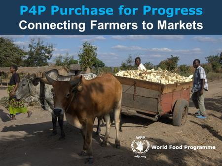 P4P Purchase for Progress Connecting Farmers to Markets.