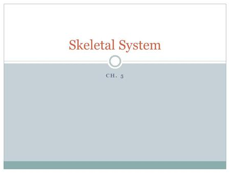 CH. 5 Skeletal System. Know the functions of the skeletal system 206 bones with 2 divisions.