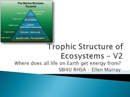 Where does all life on Earth get energy from? SBI4U RHSA – Ellen Murray.