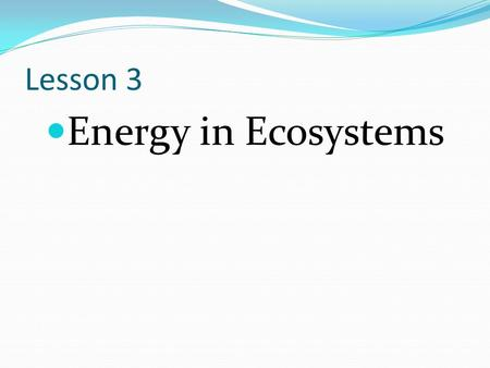 Lesson 3 Energy in Ecosystems.