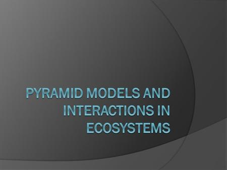 Pyramid Models  Used to show amount of matter and energy in an ecosystem  Shows the general flow of energy from producers to consumers and the amount.