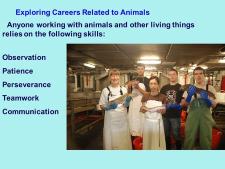 Exploring Careers Related to Animals Anyone working with animals and other living things relies on the following skills: Observation Patience Perseverance.