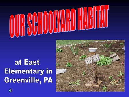 In the spring of 2000, we began creating our schoolyard habitat.