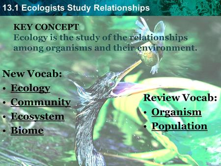 New Vocab: Ecology Community Ecosystem Review Vocab: Biome Organism