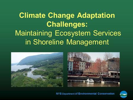 NYS Department of Environmental Conservation Climate Change Adaptation Challenges: Maintaining Ecosystem Services in Shoreline Management.