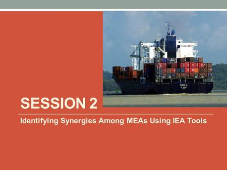 SESSION 2 Identifying Synergies Among MEAs Using IEA Tools.