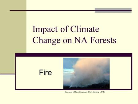 Impact of Climate Change on NA Forests Fire Courtesy of Tom Swetnam, U of Arizona, LTRR.