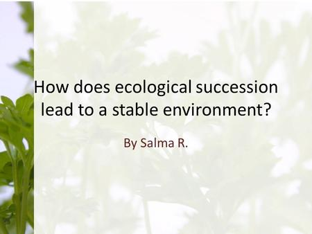 How does ecological succession lead to a stable environment? By Salma R.