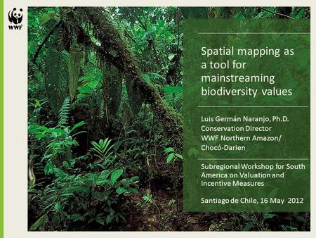 Spatial mapping as a tool for mainstreaming biodiversity values Subregional Workshop for South America on Valuation and Incentive Measures Santiago de.