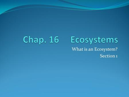 What is an Ecosystem? Section 1. Interactions of Organisms and Their Environment Ecology – the study of the interactions of living organisms with one.