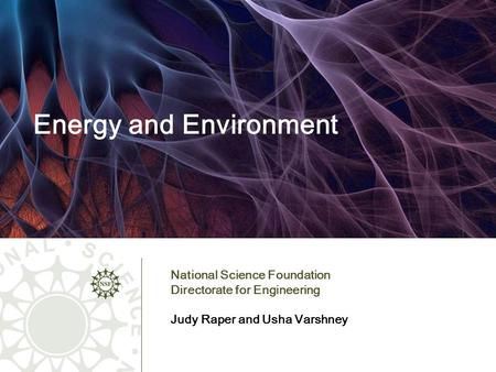 Energy and Environment National Science Foundation Directorate for Engineering Judy Raper and Usha Varshney.