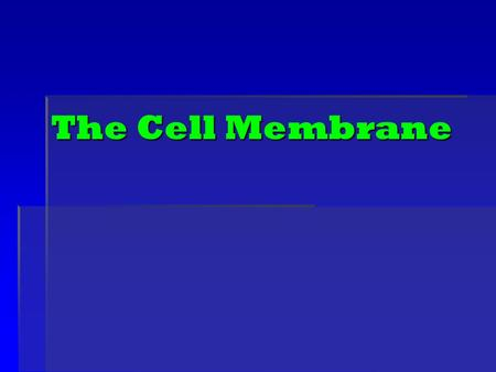 The Cell Membrane. Animal Cell Plant Cell Prokaryotic Cell: Bacteria.