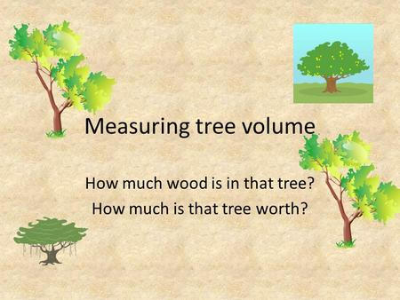 Measuring tree volume How much wood is in that tree? How much is that tree worth?