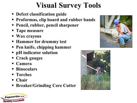 Visual Survey Tools Defect classification guide