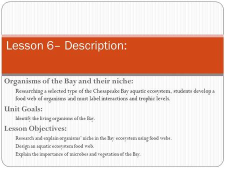 Lesson 6– Description: Organisms of the Bay and their niche: Researching a selected type of the Chesapeake Bay aquatic ecosystem, students develop a food.