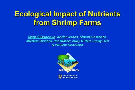 Ecological Impact of Nutrients from Shrimp Farms Mark O'Donohue, Adrian Jones, Simon Costanzo, Michele Burford, Pat Glibert, Judy O'Neil, Cindy Heil &