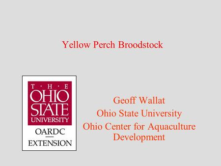 Yellow Perch Broodstock Geoff Wallat Ohio State University Ohio Center for Aquaculture Development.