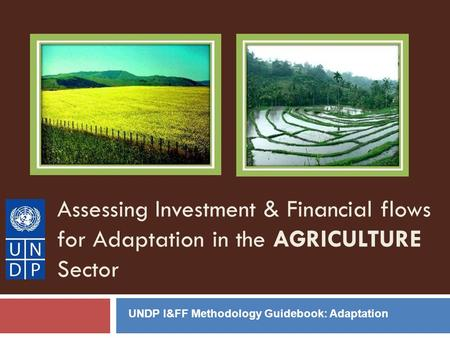 Assessing Investment & Financial flows for Adaptation in the AGRICULTURE Sector UNDP I&FF Methodology Guidebook: Adaptation.