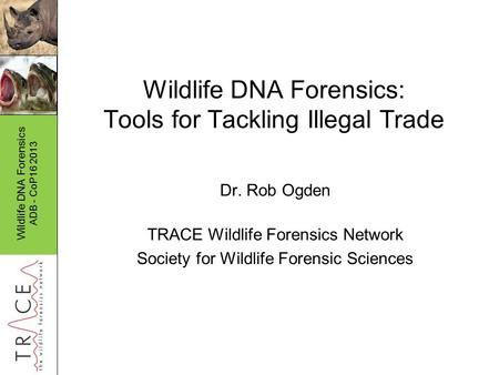 Wildlife DNA Forensics ADB - CoP16 2013 Wildlife DNA Forensics: Tools for Tackling Illegal Trade Dr. Rob Ogden TRACE Wildlife Forensics Network Society.