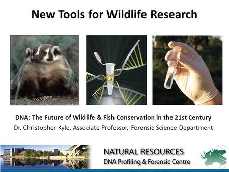 New Tools for Wildlife Research DNA: The Future of Wildlife & Fish Conservation in the 21st Century Dr. Christopher Kyle, Associate Professor, Forensic.