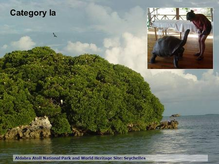 Category Ia Aldabra Atoll National Park and World Heritage Site: Seychelles.
