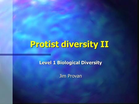 Protist diversity II Level 1 Biological Diversity Jim Provan.