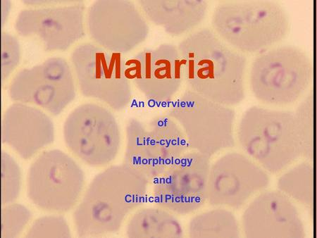 Malaria An Overview of Life-cycle, Morphology and Clinical Picture.