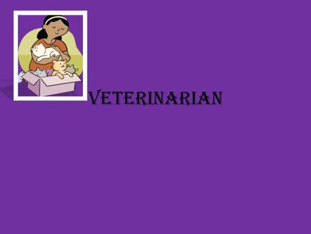 Veterinarian. Veterinarian job Duties Many veterinarians treat small companion animals. As a small animal vet, you may perform services such as spaying.