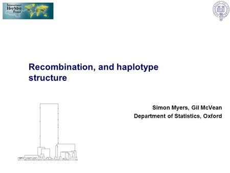 Recombination, and haplotype structure Simon Myers, Gil McVean Department of Statistics, Oxford.