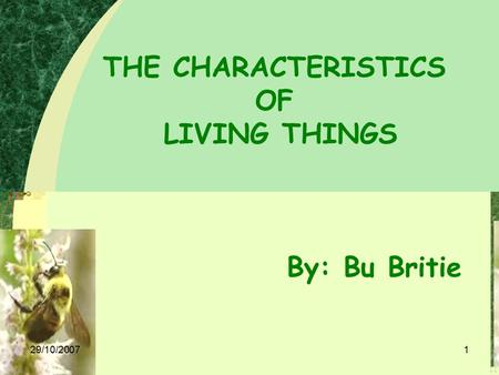 29/10/20071 THE CHARACTERISTICS OF LIVING THINGS By: Bu Britie.