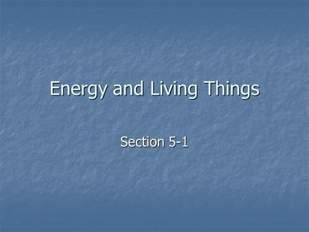 Energy and Living Things Section 5-1. Energy Flows Between Organisms in Living Systems Almost all energy in living systems needed for metabolism comes.