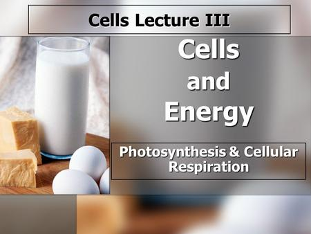 Cells and Energy Photosynthesis & Cellular Respiration Cells Lecture III.