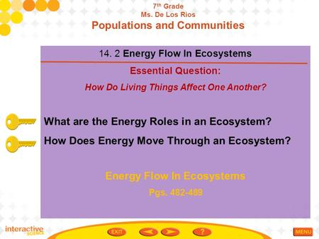Populations and Communities Energy Flow In Ecosystems