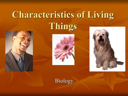 Characteristics of Living Things Biology. Objectives Be able to determine whether something is a living thing or a non-living thing. Be able to determine.
