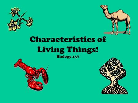 "Characteristics of Living Things! Biology 137. What is biology? Let's break it down… –bios = ""life"" –ology = ""study of"" So…Biology = Study of life."