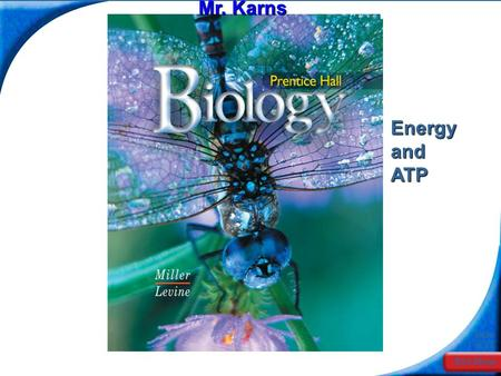 End Show Slide 1 of 20 Mr. Karns Energy and ATP. End Show Slide 2 of 20 8-1 Energy and Life.