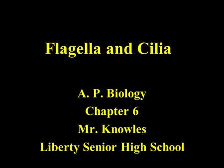 Flagella and Cilia A. P. Biology Chapter 6 Mr. Knowles Liberty Senior High School.