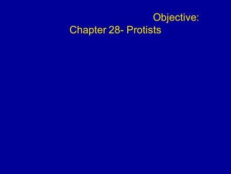Objective: Chapter 28- Protists. Overview: Living Small Even a low-power microscope can reveal a great variety of organisms in a drop of pond water Protist.