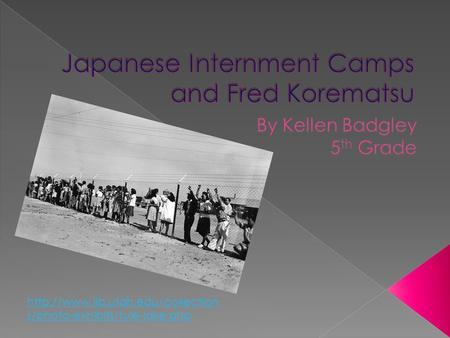 japanese internment thesis statement
