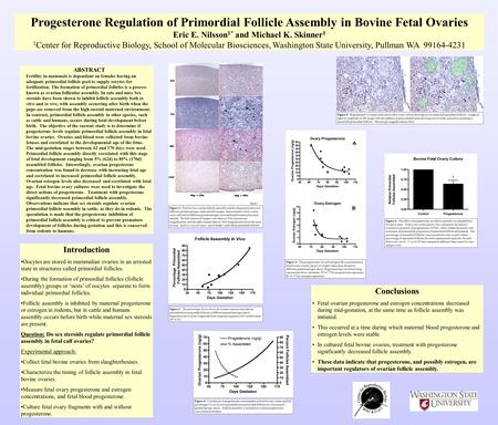 Progesterone Regulation of Primordial Follicle Assembly in Bovine Fetal Ovaries Eric E. Nilsson 1* and Michael K. Skinner 1 1 Center for Reproductive Biology,