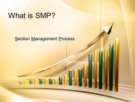 What is SMP? Section Management Process. SMP Introduction Process that emphasizes: –Assessing member needs – Management/business plan –Section performance.