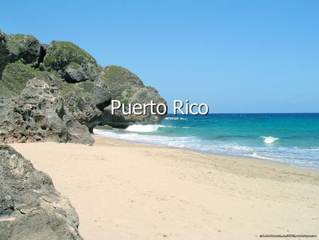 Puerto Rico. Puerto Rico Map Puerto Rico Flag Information Geography: It is mostly mountains with coastal plain belt in north; mountains precipitous to.