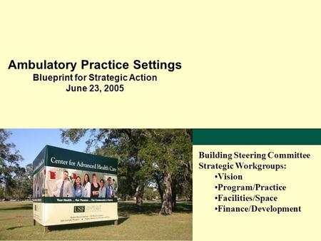 Ambulatory Practice Settings Blueprint for Strategic Action June 23, 2005 Building Steering Committee Strategic Workgroups: Vision Program/Practice Facilities/Space.