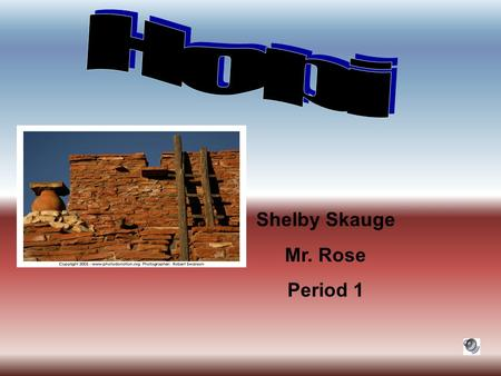 Shelby Skauge Mr. Rose Period 1 Black Mesa, 3 steep sides Four Corners Area, Ne Arizona Lived in the Plains Minerals: copper, zinc, lead, gold, silver,