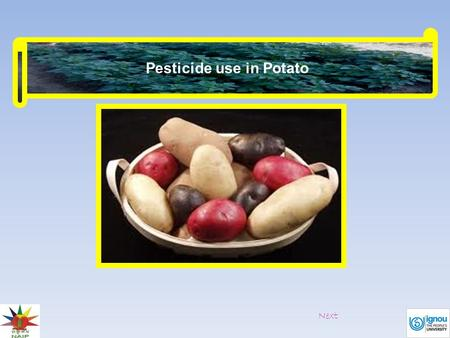 Pesticide use in Potato Next. Potato tuber moth Spray quinalphos 2 ml/litre to manage foliar damage caused by the larvae of the pest. Walls of.
