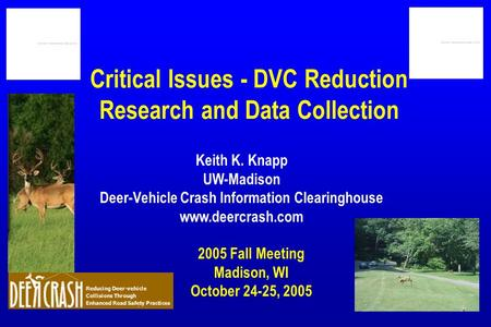Critical Issues - DVC Reduction Research and Data Collection 2005 Fall Meeting Madison, WI October 24-25, 2005 Keith K. Knapp UW-Madison Deer-Vehicle Crash.