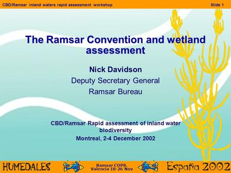 Ramsar COP8. Valencia 18-26 Nov CBD/Ramsar inland waters rapid assessment workshopSlide 1 The Ramsar Convention and wetland assessment Nick Davidson Deputy.
